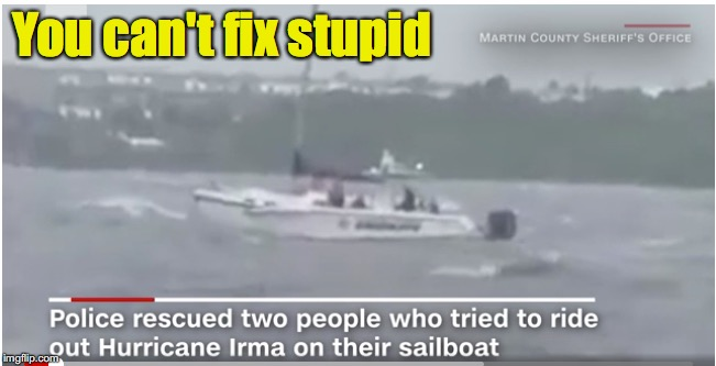 Ron White proved right once again. | You can't fix stupid | image tagged in hurricane irma,stupid,ron white | made w/ Imgflip meme maker