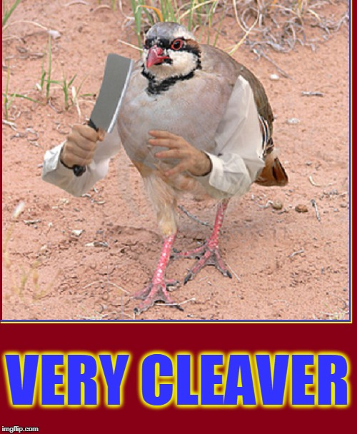 Leave it to Cleaver | VERY CLEAVER | image tagged in vince vance,pigeon,photoshop,pigeon with hands,clever or cleaver,animal meme | made w/ Imgflip meme maker