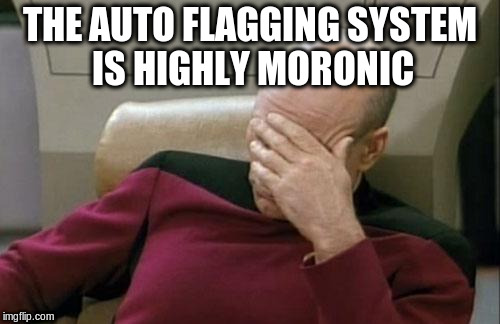 Captain Picard Facepalm Meme | THE AUTO FLAGGING SYSTEM IS HIGHLY MORONIC | image tagged in memes,captain picard facepalm | made w/ Imgflip meme maker