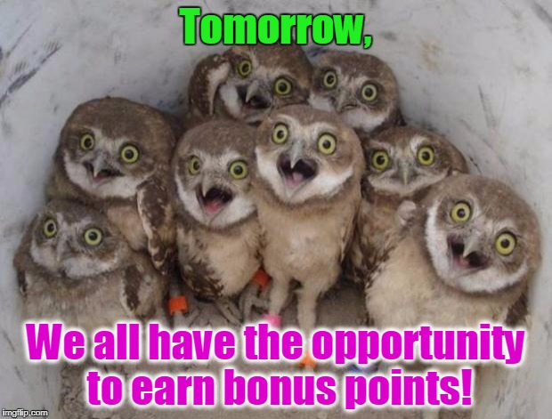 Excited Owls | Tomorrow, We all have the opportunity to earn bonus points! | image tagged in excited owls | made w/ Imgflip meme maker