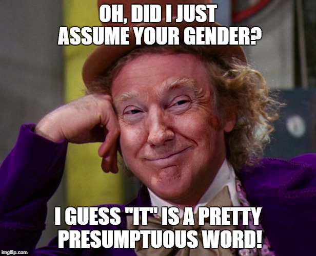 "OH, DID I JUST ASSUME YOUR GENDER? I GUESS ""IT"" IS A PRETTY PRESUMPTUOUS WORD! 