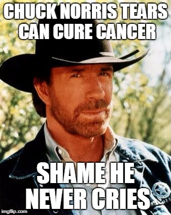 Chuck Norris Meme | CHUCK NORRIS TEARS CAN CURE CANCER SHAME HE NEVER CRIES | image tagged in memes,chuck norris | made w/ Imgflip meme maker
