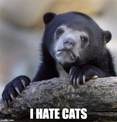 Confession Bear Meme | I HATE CATS | image tagged in memes,confession bear | made w/ Imgflip meme maker