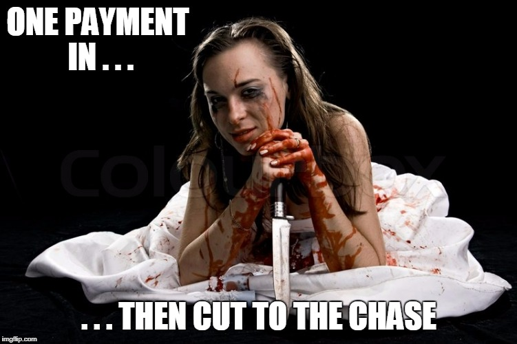 ONE PAYMENT IN . . . . . . THEN CUT TO THE CHASE | made w/ Imgflip meme maker