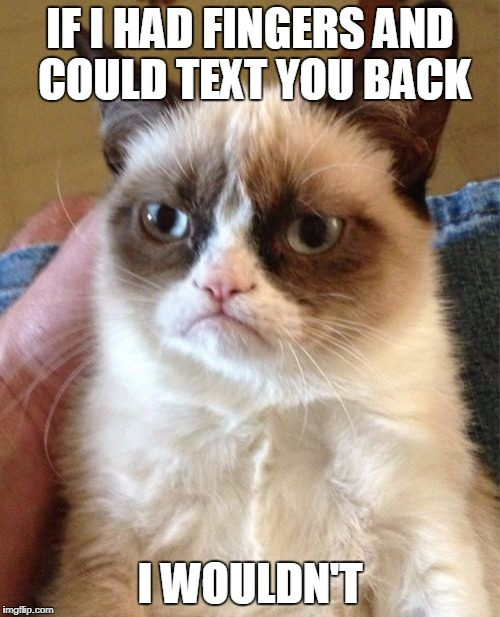 Grumpy Cat Meme | IF I HAD FINGERS AND COULD TEXT YOU BACK I WOULDN'T | image tagged in memes,grumpy cat | made w/ Imgflip meme maker