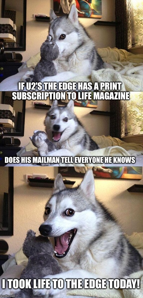 Bad Pun Dog Meme | IF U2'S THE EDGE HAS A PRINT SUBSCRIPTION TO LIFE MAGAZINE DOES HIS MAILMAN TELL EVERYONE HE KNOWS I TOOK LIFE TO THE EDGE TODAY! | image tagged in memes,bad pun dog | made w/ Imgflip meme maker