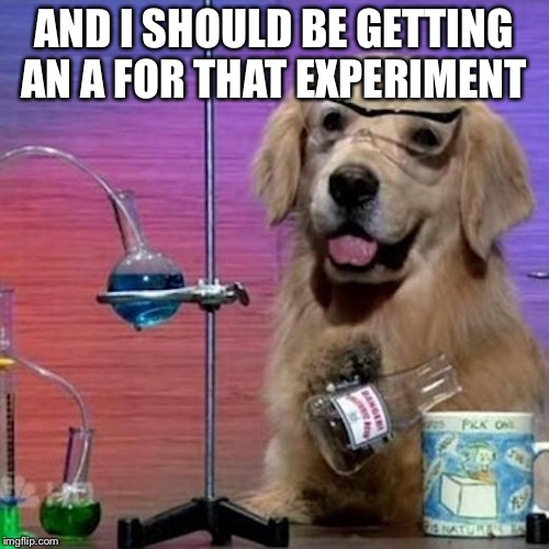 I Have No Idea What I Am Doing Dog | AND I SHOULD BE GETTING AN A FOR THAT EXPERIMENT | image tagged in memes,i have no idea what i am doing dog | made w/ Imgflip meme maker