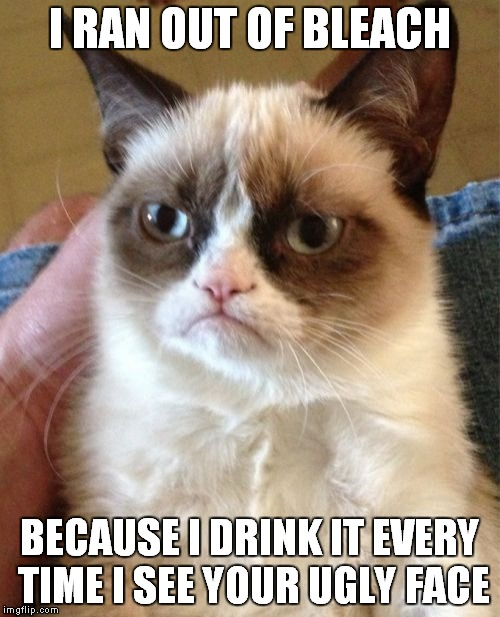 As for me,I never ran out of Bleach!Because every time I see the faces of those I hate,I also throw up some Bleach! | I RAN OUT OF BLEACH BECAUSE I DRINK IT EVERY TIME I SEE YOUR UGLY FACE | image tagged in memes,grumpy cat,funny,bleach,drink bleach,dank | made w/ Imgflip meme maker