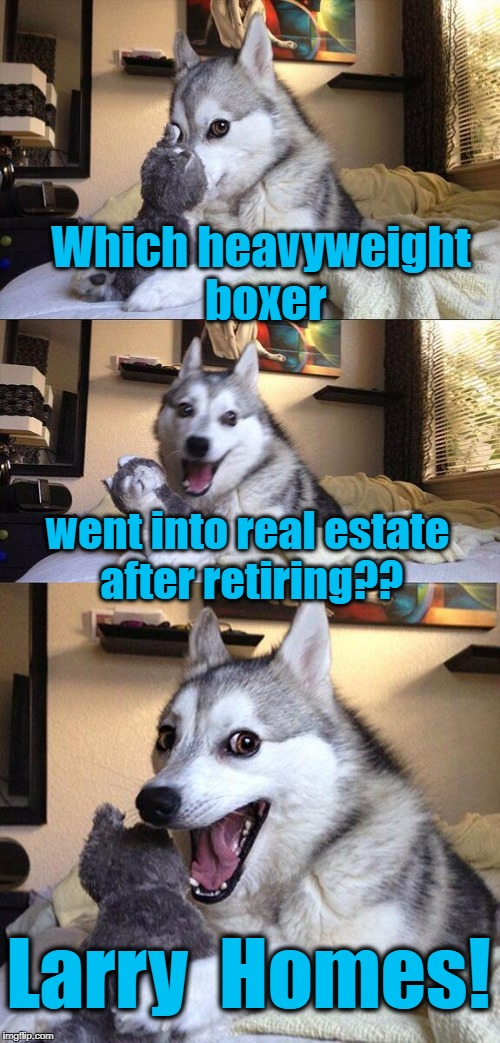 Bad Pun Dog Meme | Which heavyweight boxer went into real estate after retiring?? Larry  Homes! | image tagged in memes,bad pun dog | made w/ Imgflip meme maker