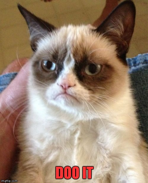 Grumpy Cat Meme | DOO IT | image tagged in memes,grumpy cat | made w/ Imgflip meme maker