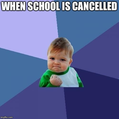 :D | WHEN SCHOOL IS CANCELLED | image tagged in memes,success kid,school | made w/ Imgflip meme maker