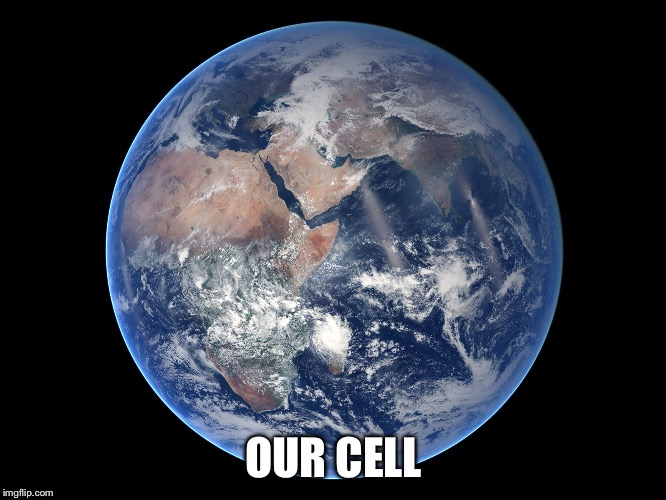 OUR CELL | made w/ Imgflip meme maker