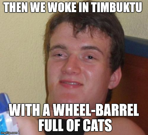 10 Guy Meme | THEN WE WOKE IN TIMBUKTU WITH A WHEEL-BARREL FULL OF CATS | image tagged in memes,10 guy | made w/ Imgflip meme maker