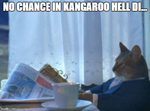 I Should Buy A Boat Cat Meme | NO CHANCE IN KANGAROO HELL DI... | image tagged in memes,i should buy a boat cat | made w/ Imgflip meme maker