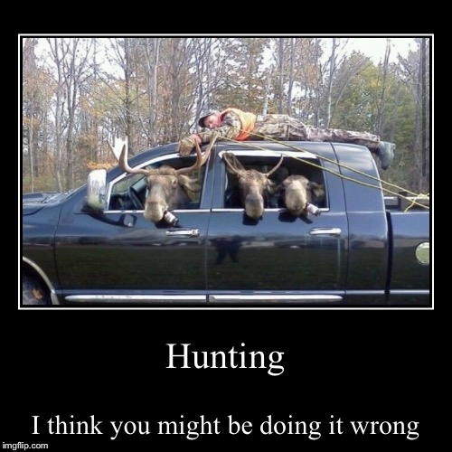 They tracked him all day before they made the kill  | Hunting | I think you might be doing it wrong | image tagged in funny,demotivationals,hunter,hunting,moose,hunting season | made w/ Imgflip demotivational maker