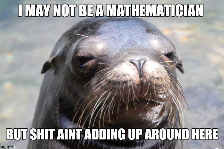 My Whiskers Are Tingling  | I MAY NOT BE A MATHEMATICIAN BUT SHIT AINT ADDING UP AROUND HERE | image tagged in suspicious sea lion | made w/ Imgflip meme maker