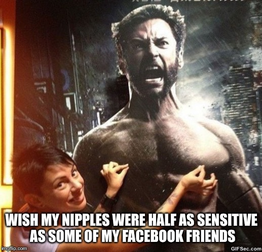 Sensitive | WISH MY NIPPLES WERE HALF AS SENSITIVE AS SOME OF MY FACEBOOK FRIENDS | image tagged in nipples,wolverine,facebook,friends,half | made w/ Imgflip meme maker