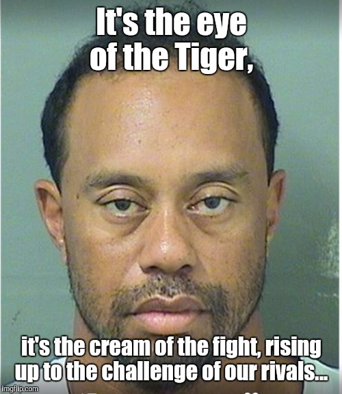 It's the eye of the Tiger, it's the cream of the fight, rising up to the challenge of our rivals... | made w/ Imgflip meme maker