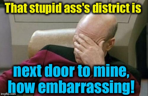 Captain Picard Facepalm Meme | That stupid ass's district is next door to mine, how embarrassing! | image tagged in memes,captain picard facepalm | made w/ Imgflip meme maker