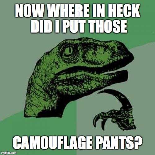Philosoraptor Meme | NOW WHERE IN HECK DID I PUT THOSE CAMOUFLAGE PANTS? | image tagged in memes,philosoraptor | made w/ Imgflip meme maker