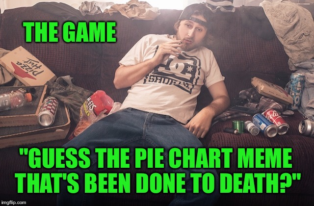 "Stoner on couch | THE GAME ""GUESS THE PIE CHART MEME THAT'S BEEN DONE TO DEATH?"" 