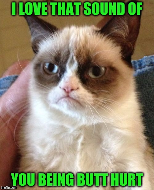 Grumpy Cat | I LOVE THAT SOUND OF YOU BEING BUTT HURT | image tagged in memes,grumpy cat,funny,butthurt | made w/ Imgflip meme maker