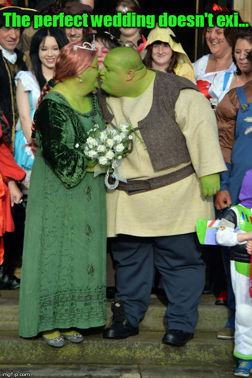 Game ogre | The perfect wedding doesn't exi... | image tagged in shrek,shrek is love,getting married,marriage,wedding | made w/ Imgflip meme maker