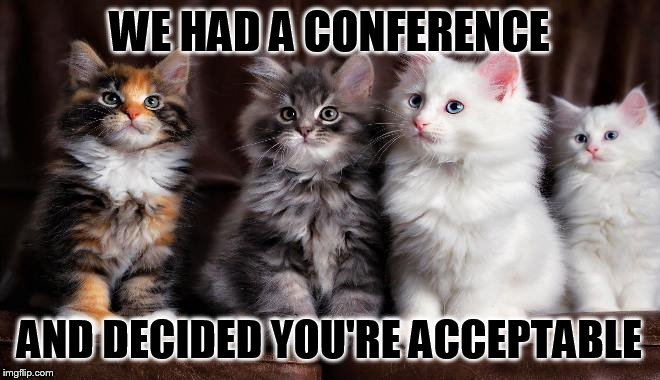 WE HAD A CONFERENCE AND DECIDED YOU'RE ACCEPTABLE | made w/ Imgflip meme maker