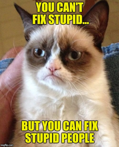 Grumpy Cat Meme | YOU CAN'T FIX STUPID... BUT YOU CAN FIX STUPID PEOPLE | image tagged in memes,grumpy cat | made w/ Imgflip meme maker
