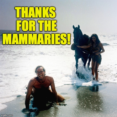 THANKS FOR THE MAMMARIES! | made w/ Imgflip meme maker