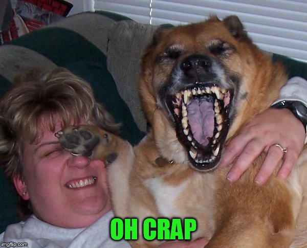 laughing dog | OH CRAP | image tagged in laughing dog | made w/ Imgflip meme maker