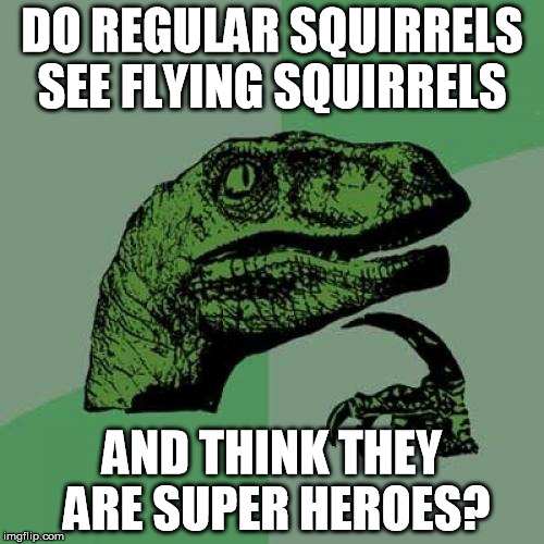 Superhero |  DO REGULAR SQUIRRELS SEE FLYING SQUIRRELS; AND THINK THEY ARE SUPER HEROES? | image tagged in memes,philosoraptor,superman,superheroes,marvel,flying | made w/ Imgflip meme maker