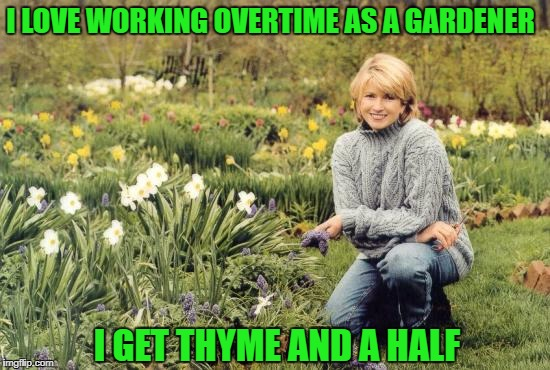 You Haven't Botany Flowers Yet? | I LOVE WORKING OVERTIME AS A GARDENER I GET THYME AND A HALF | image tagged in gangster gardener | made w/ Imgflip meme maker