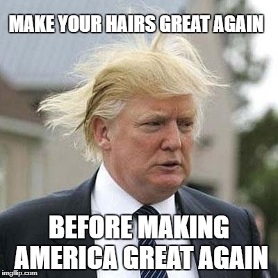Donald Trump | MAKE YOUR HAIRS GREAT AGAIN BEFORE MAKING AMERICA GREAT AGAIN | image tagged in donald trump | made w/ Imgflip meme maker