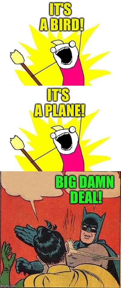 IT'S A BIRD! BIG DAMN DEAL! IT'S A PLANE! | made w/ Imgflip meme maker