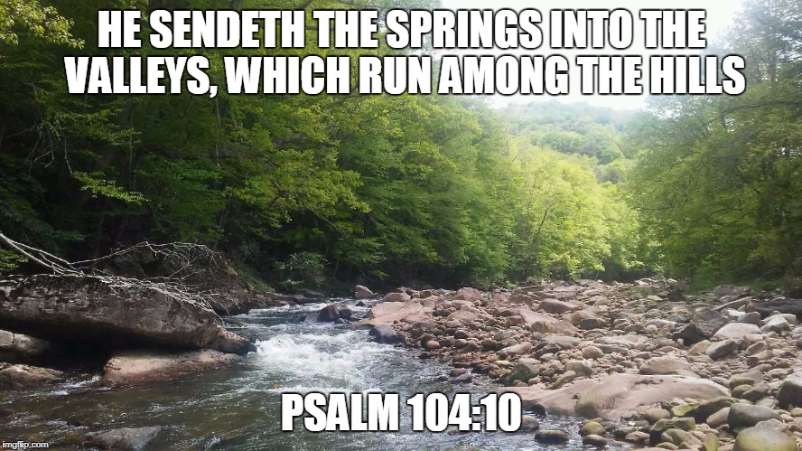 HE SENDETH THE SPRINGS INTO THE VALLEYS, WHICH RUN AMONG THE HILLS PSALM 104:10 | image tagged in wv mountain stream | made w/ Imgflip meme maker