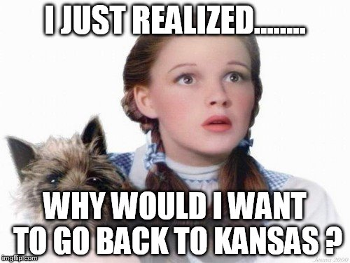I JUST REALIZED........ WHY WOULD I WANT TO GO BACK TO KANSAS ? | image tagged in dorothy and toto | made w/ Imgflip meme maker
