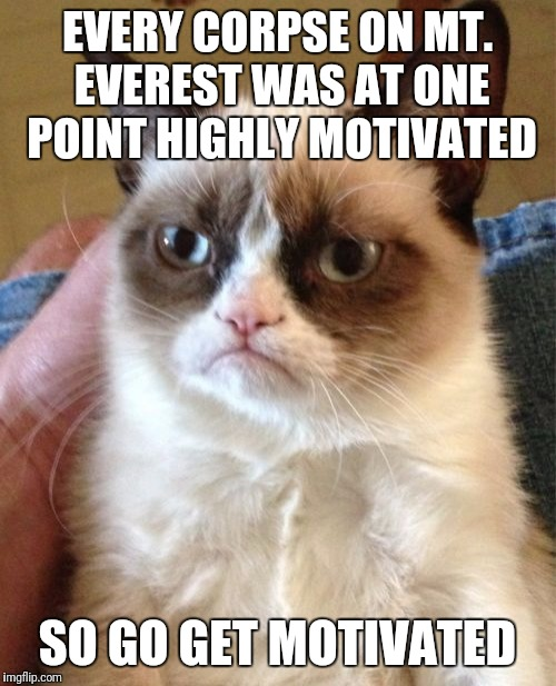 Grumpy Cat Meme | EVERY CORPSE ON MT. EVEREST WAS AT ONE POINT HIGHLY MOTIVATED SO GO GET MOTIVATED | image tagged in memes,grumpy cat | made w/ Imgflip meme maker