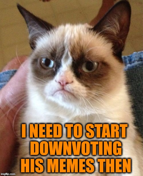 Grumpy Cat Meme | I NEED TO START DOWNVOTING HIS MEMES THEN | image tagged in memes,grumpy cat | made w/ Imgflip meme maker
