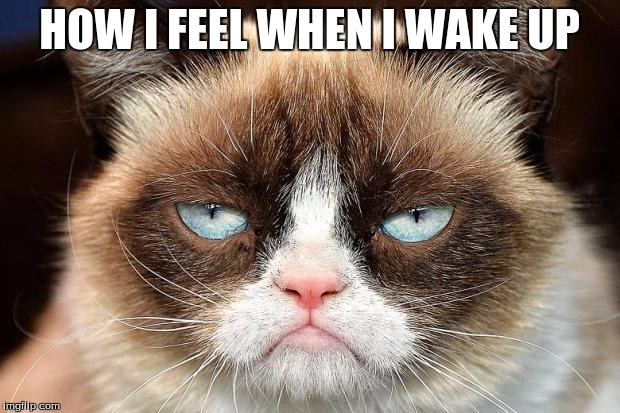 Grumpy Cat Not Amused Meme | HOW I FEEL WHEN I WAKE UP | image tagged in memes,grumpy cat not amused,grumpy cat | made w/ Imgflip meme maker