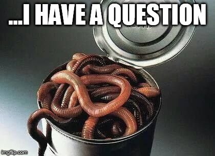 Can of Worms | ...I HAVE A QUESTION | image tagged in can of worms | made w/ Imgflip meme maker
