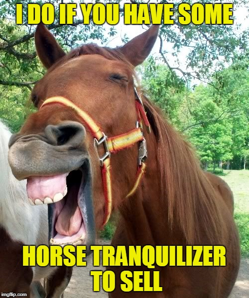 I DO IF YOU HAVE SOME HORSE TRANQUILIZER TO SELL | made w/ Imgflip meme maker