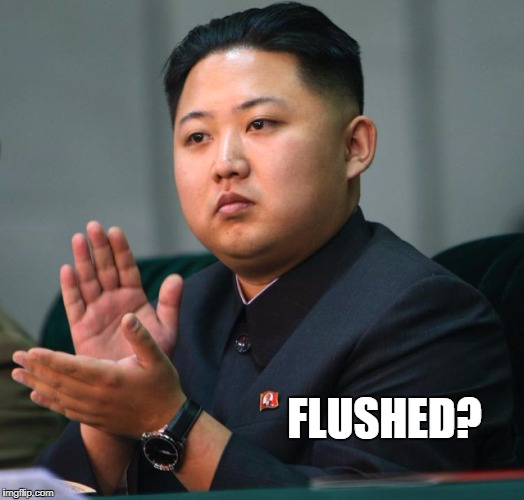 Applause for flushing the toilet | FLUSHED? | image tagged in toilet humor,flush tiolet | made w/ Imgflip meme maker