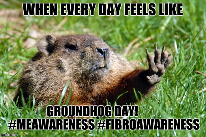 WHEN EVERY DAY FEELS LIKE GROUNDHOG DAY!          #MEAWARENESS #FIBROAWARENESS | image tagged in groundhog | made w/ Imgflip meme maker
