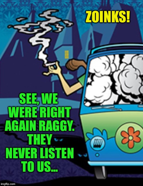 ZOINKS! SEE, WE WERE RIGHT AGAIN RAGGY. THEY NEVER LISTEN TO US... | made w/ Imgflip meme maker