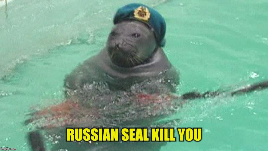 RUSSIAN SEAL KILL YOU | made w/ Imgflip meme maker