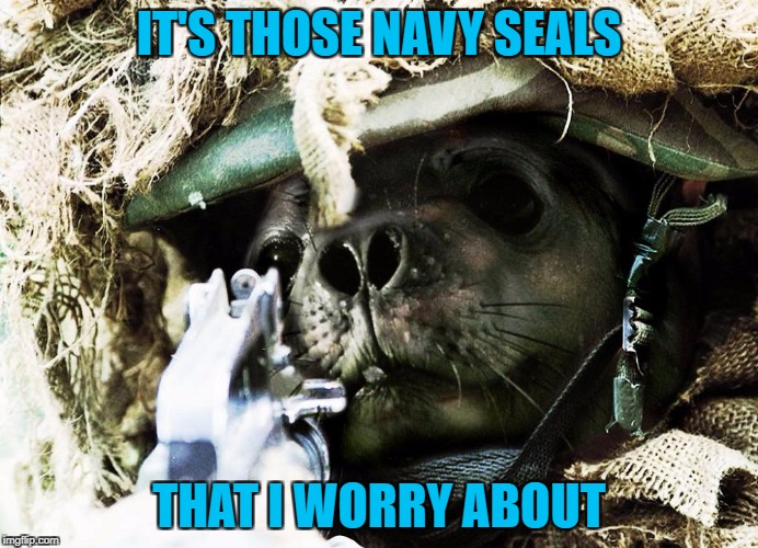 IT'S THOSE NAVY SEALS THAT I WORRY ABOUT | made w/ Imgflip meme maker