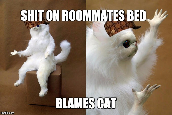 Persian Cat Room Guardian Meme | SHIT ON ROOMMATES BED BLAMES CAT | image tagged in memes,persian cat room guardian,scumbag | made w/ Imgflip meme maker