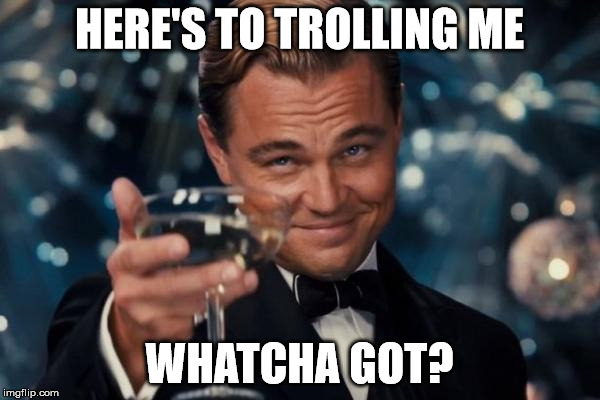 HERE'S TO TROLLING ME WHATCHA GOT? | image tagged in memes,leonardo dicaprio cheers | made w/ Imgflip meme maker