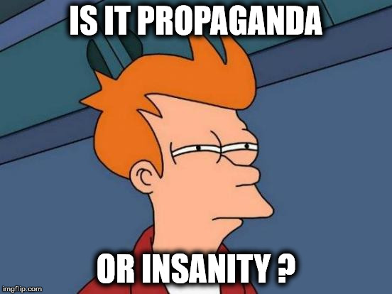 Futurama Fry Meme | IS IT PROPAGANDA OR INSANITY ? | image tagged in memes,futurama fry | made w/ Imgflip meme maker